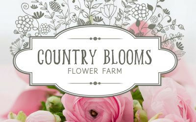 Logo Design for Country Blooms Flower Farm